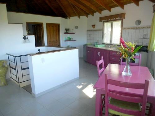 Cuisine salon vue jardin tropical 1