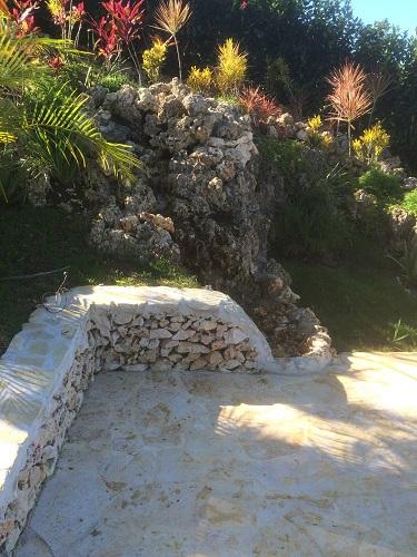 Jardin arbore avec mur de pierres