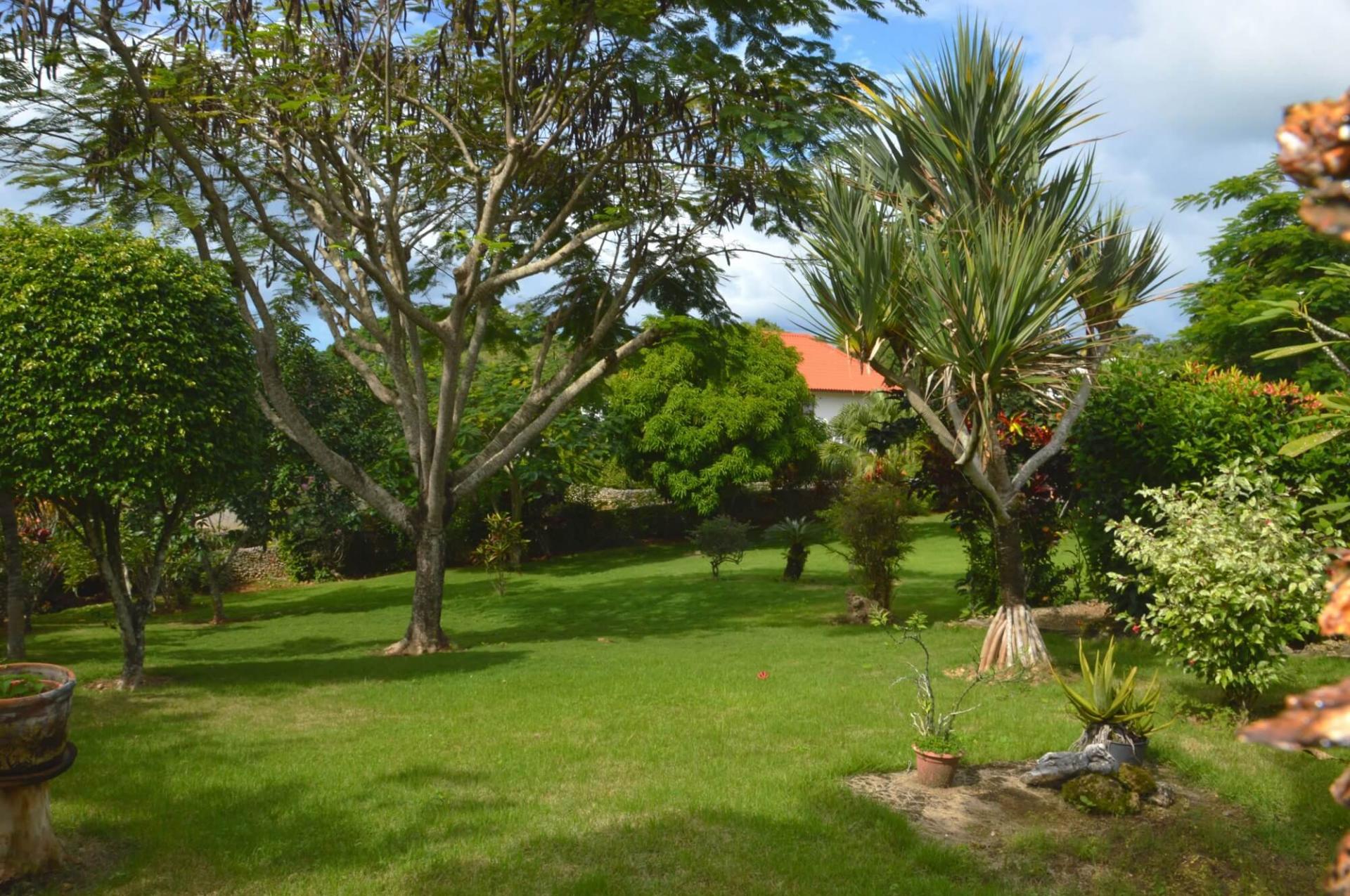 Jardin piscine rio san juan 1
