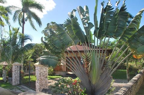 Petite maison pas chere en republique dominicaine